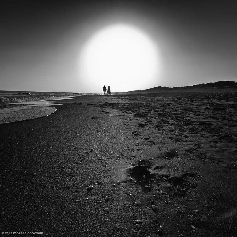 800-the last sun