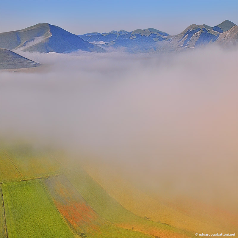 fog and colors