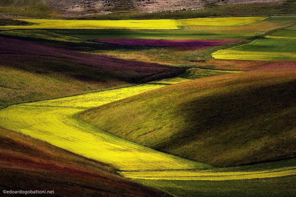960-surreal landscape-EDOARDO GOBATTONI