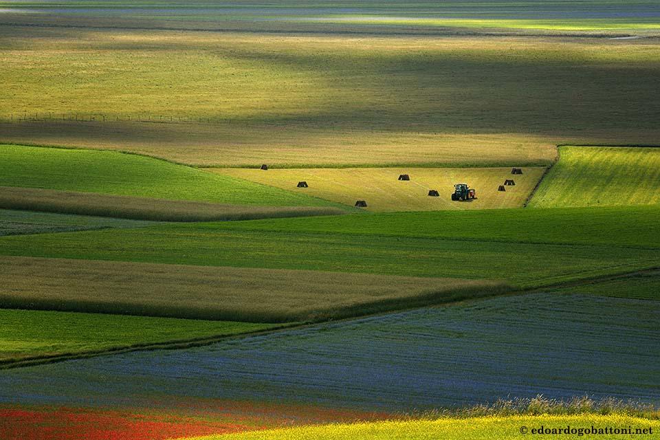 960-Between shadows and light - EDOARDO GOBATTONI