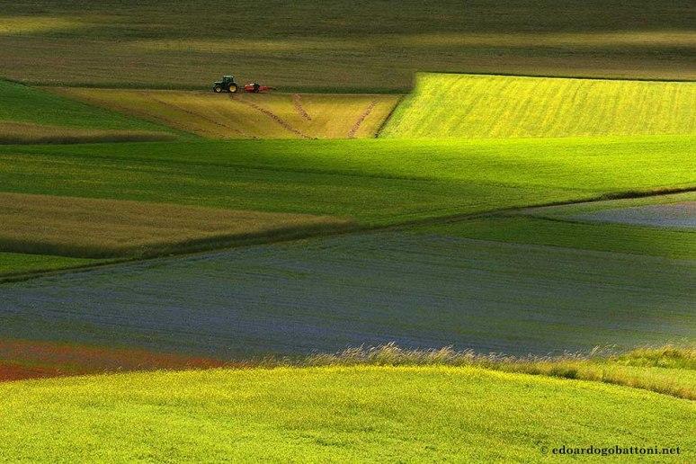 960 Between shadows and light 2-EDOARDO GOBATTONI