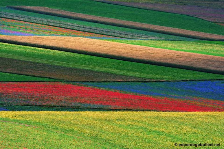 960-Abstract landscape #2-EDOARDO GOBATTONI