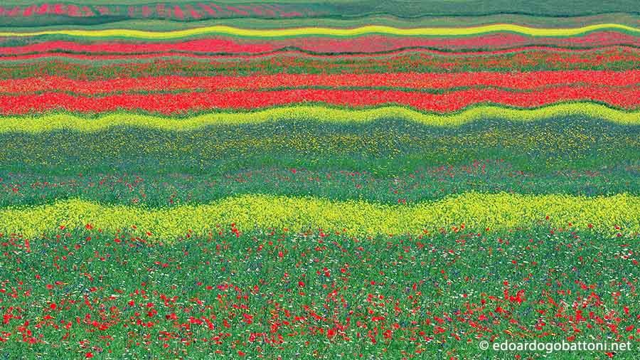 900-Abstract Landscape#5-EDOARDO GOBATTONI