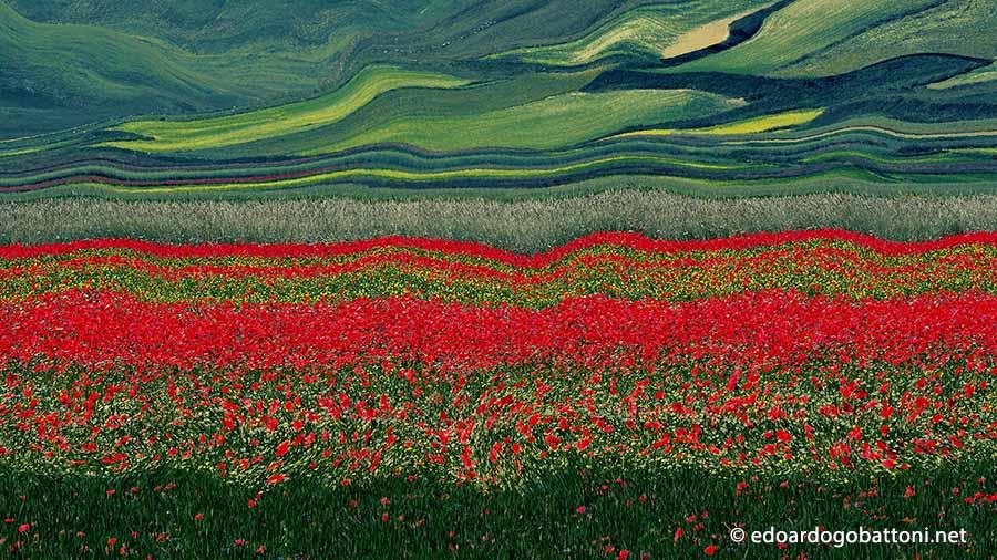 900-Abstract landscape #7 - EDOARDO GOBATTONI