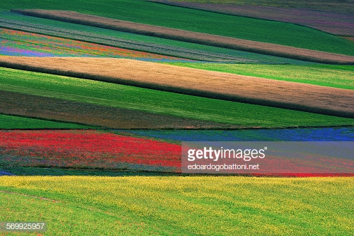 gettyimages-569925957-170667a